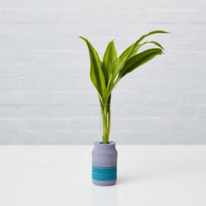 LIO Single Stem Vase 3